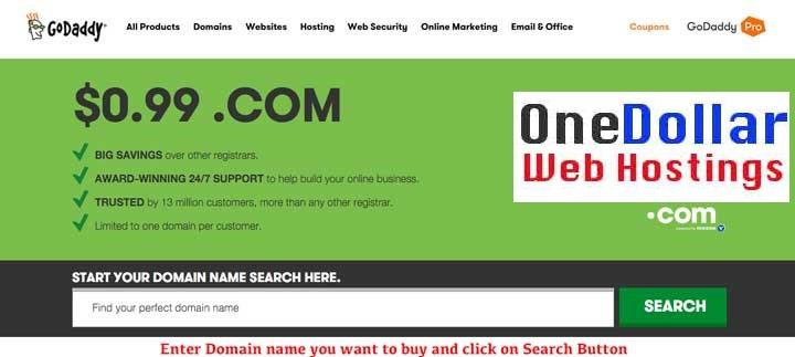 $1 domain Name