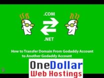 Godaddy Transfer Domain to another account