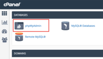 How to Install WordPress plugin in cPanel?