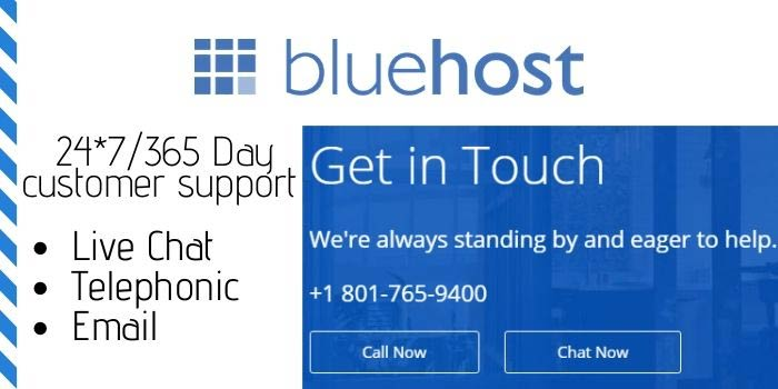 Bluehost support team