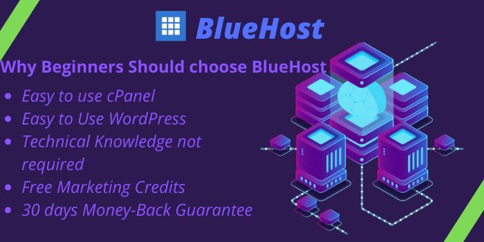 BlueHost for Beginners