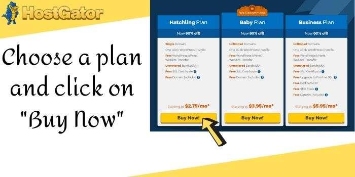 Hostgator Hosting Plan